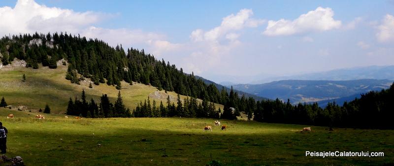 peisajele-calatorului-vf-hasmasul-mare